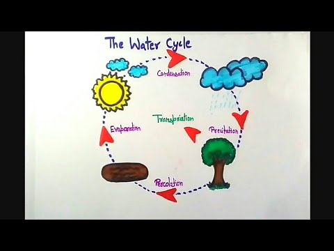 How to draw The water cycle drawing ~ save water