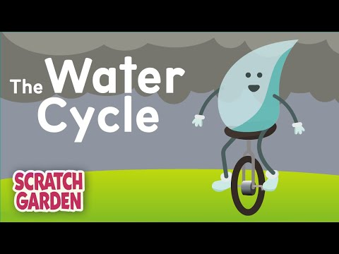 The Water Cycle Song  Scratch Garden