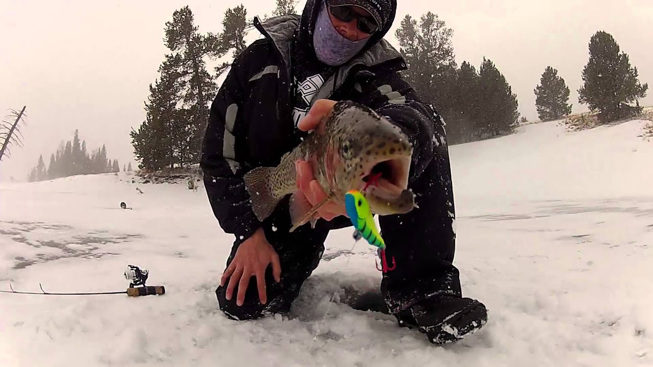 Best ice fishing lure youtube for Ice fishing trout lures