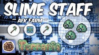Terraria AFK Rapid Slime Staff Farm | 1.3 Summoner Tips