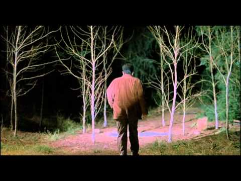 Twin Peaks (Fire Walk With Me)-Final Sequence