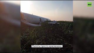 «Пассажиры аплодировали и говорили «спасибо»: главное об аварийной посадке A321 в Подмосковье