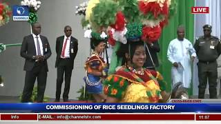 Gambar cover President Buhari Commissions Rice Seedling Factory In Calabar Pt.2