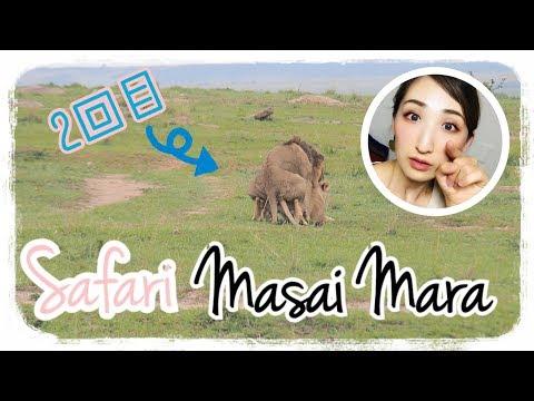 【アフリカ旅Vlog Vol.5】動物王国マサイマラ【動物好き必見】