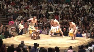 Sumo ritual