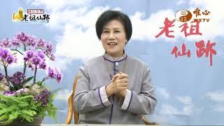 北投教室26屆 謝宗學【老祖仙跡152】  WXTV唯心電視