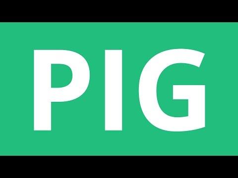 How To Pronounce Pig - Pronunciation Academy