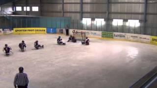 HC Sparta Praha sledge hokej vs Studénka