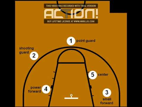 5 Roles and Positions in  Basketball