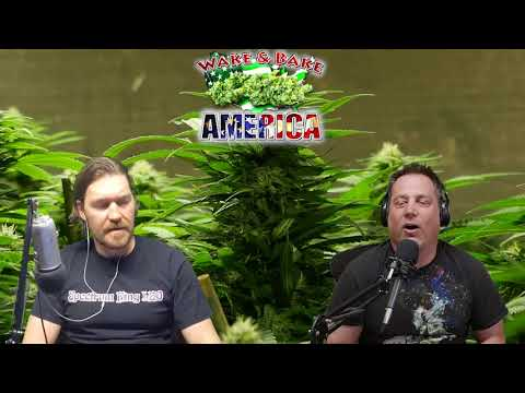 Wake & Bake America 591 Denver Legalizing Magic Mushrooms & Farming Robots