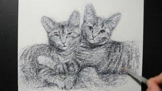 Draw Your Pets / Fan Request / Ballpoint Pen Kittens Drawing / Scribble Art / Day 067