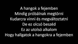 Baixar Ashley Tisdale - Voices In My Head (magyar)