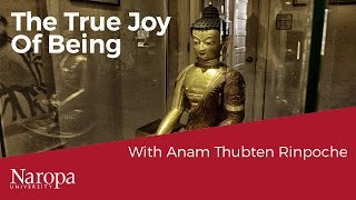 The True Joy of Being Human with Anam Thubten Rinpoche