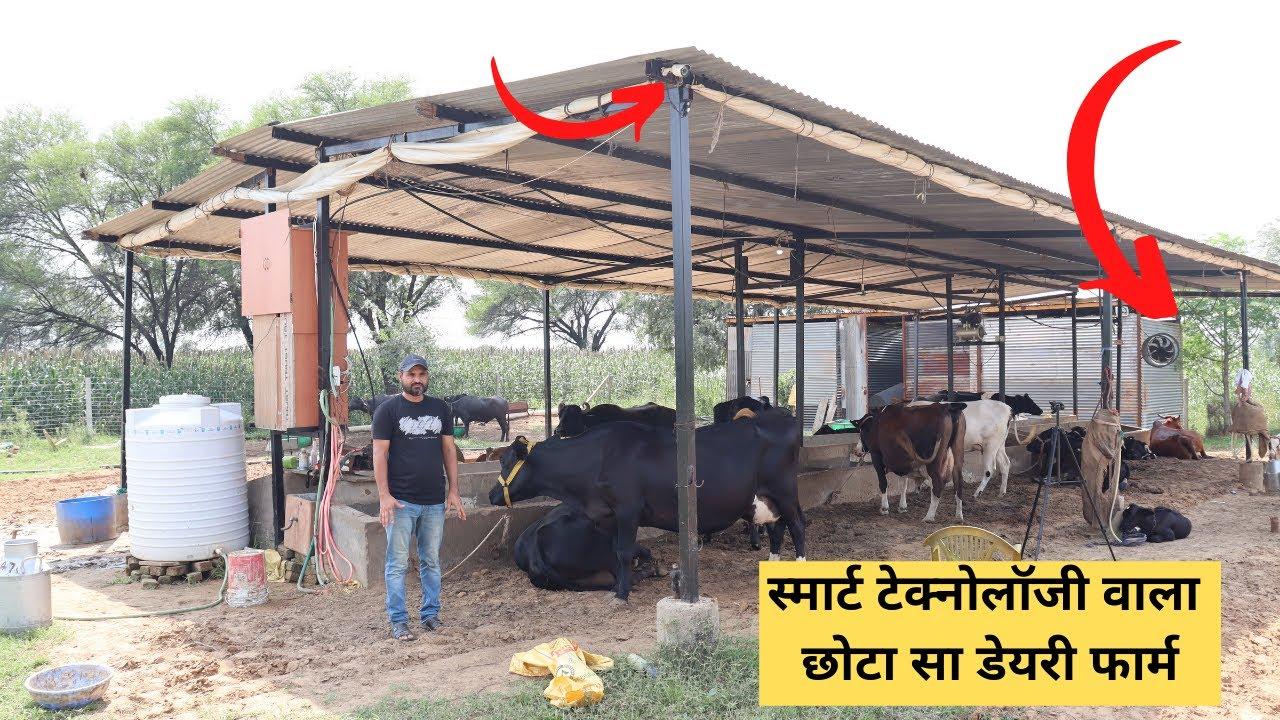स्मार्ट टेक्नोलॉजी वाला छोटा सा डेयरी फार्म |Dairy farming in India