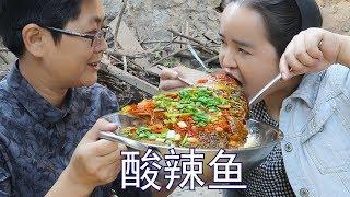 1条裸鱼,1碗辣椒,做阿朵最爱的酸辣鱼,两人全程吸着吃,太过瘾了!【湘西九九美食】