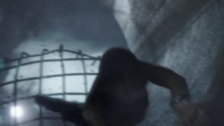 Into The Storm - HD Teaser Trailer - Official Warner Bros.
