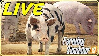 FARMING SIMULATOR 19 #73 - IL RECINTO DEI SUINI IN LIVE - GAMEPLAY ITA