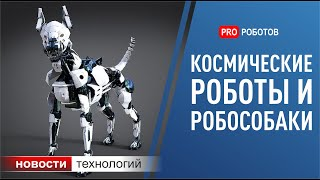 Роботы будущего, сон для искусственного интеллекта и другие новости науки и технологий