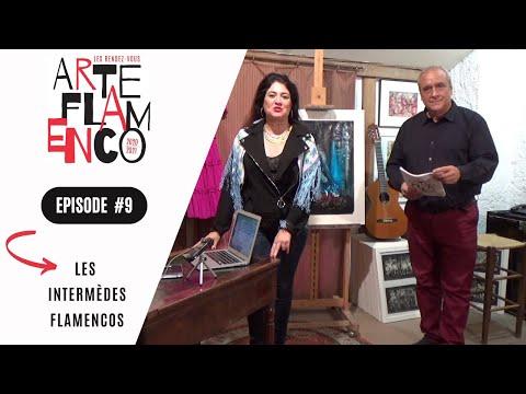 [ Épisode 9 ] Les Rendez-vous Arte Flamenco, c'est aussi des Intermèdes flamencos