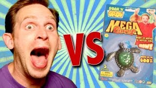 Mega Creatures Soak 'N' Grow Sea Turtle Unboxing