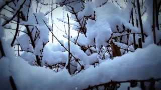 Alobar - First Snow (2006 - Ambient Videoclip)