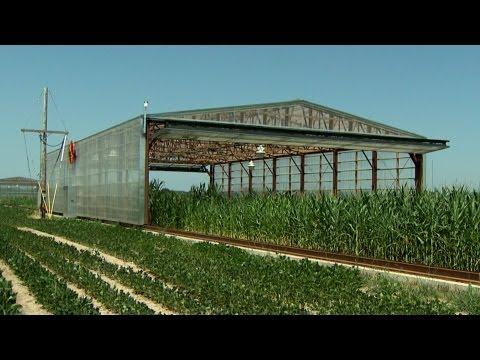 Drought Simulators Unveiled at the University of Missouri