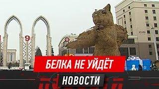Алматинская белка-гигант отправится на «ремонт» в середине марта