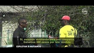 Explotación de haitianos: El cruel e ilegal negocio de algunos chileno - CHV Noticias
