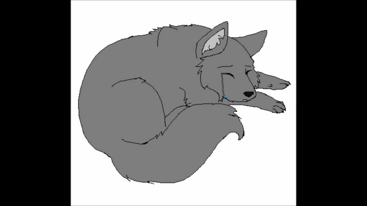 Awesome Sad Wolf   Animation Test   YouTube