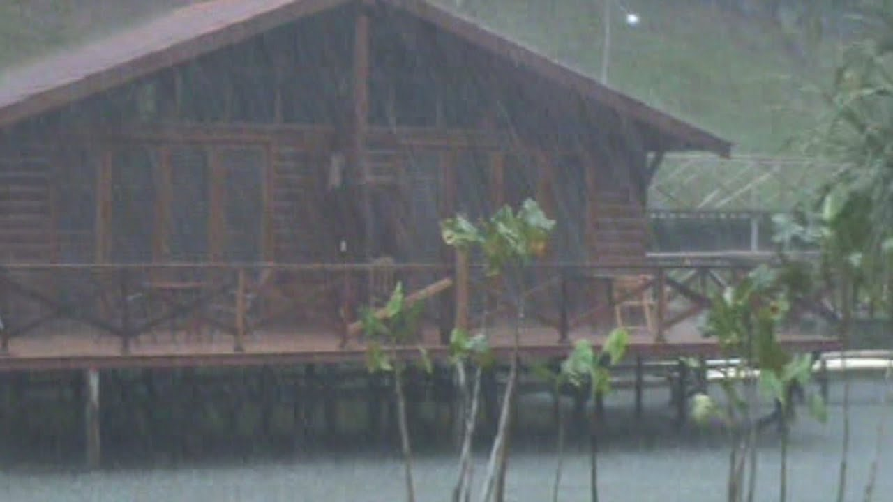 Raining Heavily In The Amazon Rainforest Youtube