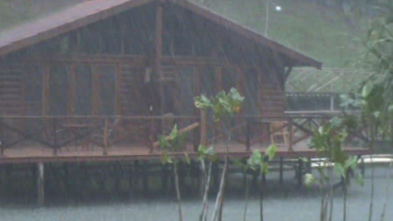 Raining Heavily In The Amazon Rainforest Youtube