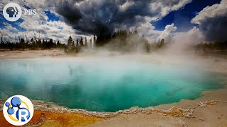 Yellowstone Steaming Acid Pools of Death