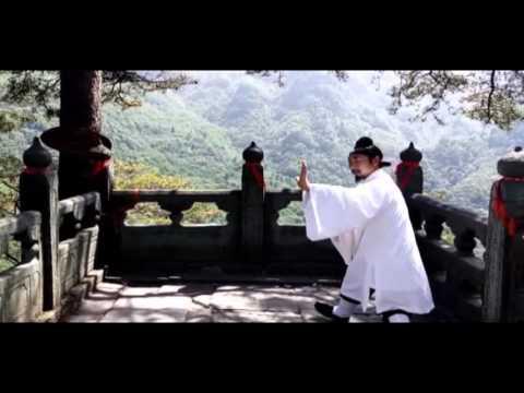Wu Dang Yin Yang Ba Gua Zhang 武当阴阳八卦掌【Xu Wei Han】