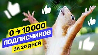 Как набрать 10000 подписчиков с нуля и раскрутить свой канал