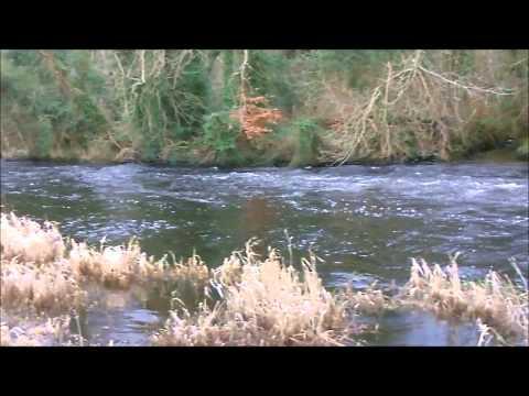 THE LENNON RIVER RAMELTON CO DONEGAL / FOYLEFISHING.COM /TRIPS