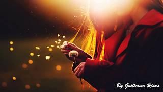 Hasta Que Me Olvides - Luis Miguel  [LETRA]