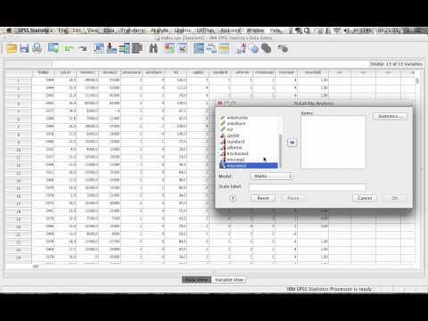 Konstruktion av index i SPSS