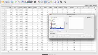 Konstruktion-av-index i SPSS