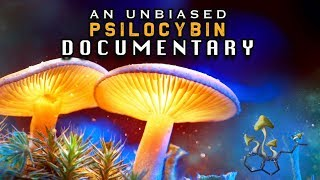 The MAGIC Behind MUSHROOMS | The Untold Story of PSILOCYBIN (Educational SHROOMS documentary)