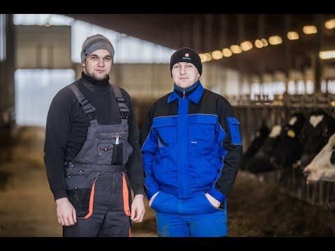 Эстония столкнулась с большим потоком трудовых мигрантов из Украины