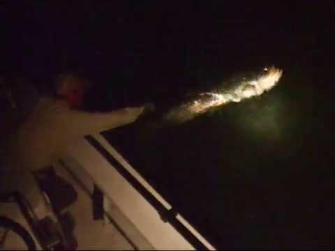 Fly Fishing For Tarpon At Night In The Lower Keys - RipLips.com