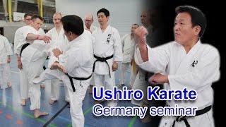 September seminar 12 & 13 2015 Ushiro sensei in Seattle! http://www...