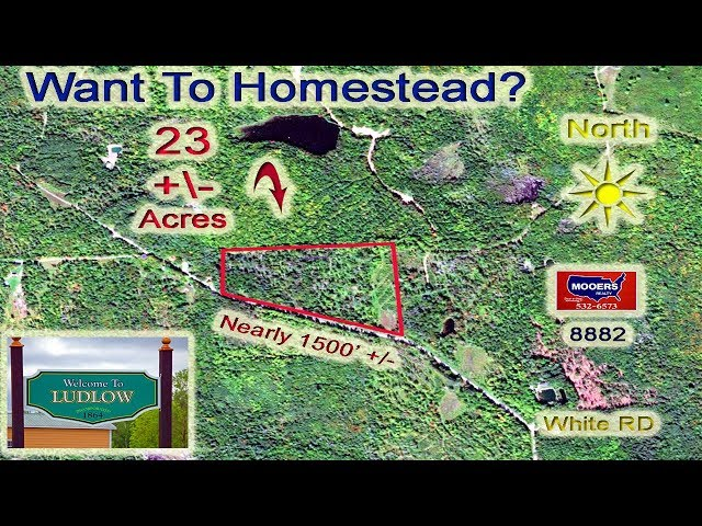 Homesteading Land In Maine, 23 Acres On White RD Ludlow MOOERS REALTY #8882