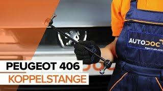 vorderachse und hinterachse Bremssattelhalter beim PEUGEOT 406 Break (8E/F) montieren: kostenlose Video