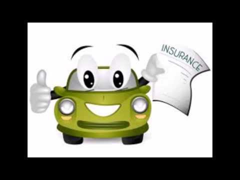 Quotes car insurance and term life insurance!