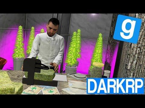 PRODUCTION DE WEED !! - Garry's Mod DarkRP #9
