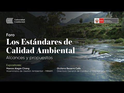 Foro - Los Estándares de Calidad Ambiental: Alcances y propuestas