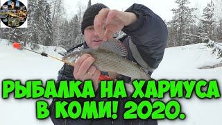 Рыбалка 2020 Ловля хариуса зимой на таёжной реке Республика Коми