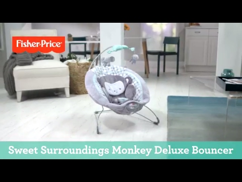 Sweet Surroundings Monkey Deluxe Bouncer | Fisher-Price