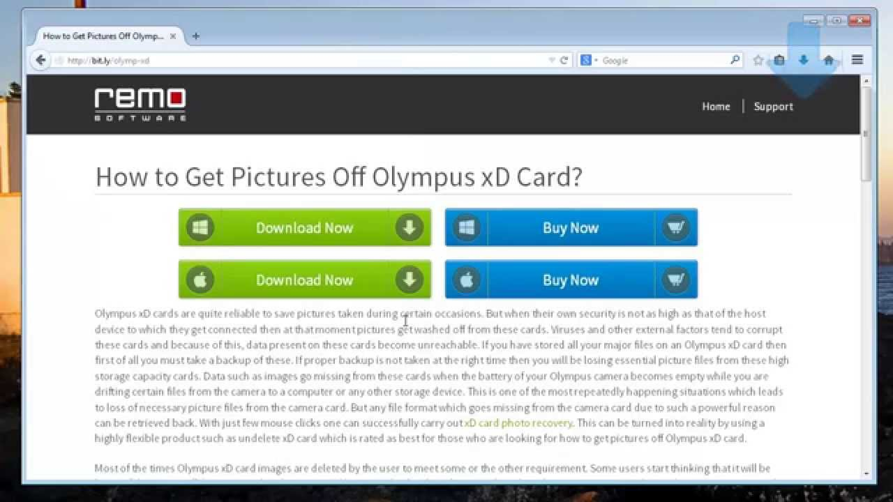 Amazon.com: Olympus xD-Picture Card M+ 2 GB: Electronics